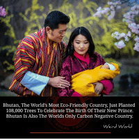 Friends, Memes, and Prince: Bhutan, The World's Most Eco-Friendly Country, Just Planted  108,000 Trees To Celebrate The Birth Of Their New Prince.  Bhutan Is Also The Worlds Only Carbon Negative Country.  Weird World