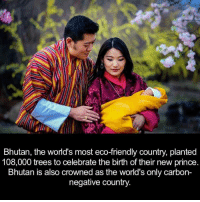 Dank, Bhutan, and 🤖: Bhutan, the world's most eco-friendly country, planted  108,000 trees to celebrate the birth of their new prince  Bhutan is also crowned as the world's only carbon-  negative country.
