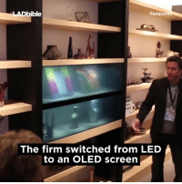 Memes, 🤖, and Led: bible  Panasoni  The firm switched from LED i  to an OLED screen Invisible TVs are the future 📺😮