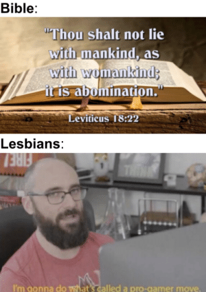 """Fire, Lesbians, and Bible: Bible:  """"Thou shalt not lie  with mankind, as  with womankind  it is abomination.  Leviticus 18:22  Lesbians:  FIRE  THINK  I'm gonna do  what's called a pro-gamer move Bible belt: You weren't supposed to do that"""