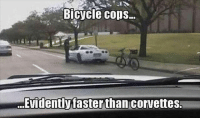 Lol CopHumor CopHumorLife Humor Funny Comedy Lol Police PoliceOfficer ThinBlueLine Cop Cops LawEnforcement LawEnforcementOfficer SheepDog BlueFamily Protect BikeCop: Bicycle cops.  ...Evidently fasterthan corvettes Lol CopHumor CopHumorLife Humor Funny Comedy Lol Police PoliceOfficer ThinBlueLine Cop Cops LawEnforcement LawEnforcementOfficer SheepDog BlueFamily Protect BikeCop