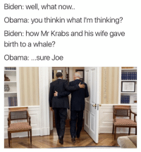 Uhhhh, sure buddy. Now let's find you that helmet P.S. (@ship) is absolute 🔥: Biden: well, what now  Obama: you thinkin what l'm thinking?  Biden: how Mr Krabs and his wife gave  birth to a whale?  Obama  sure Joe Uhhhh, sure buddy. Now let's find you that helmet P.S. (@ship) is absolute 🔥