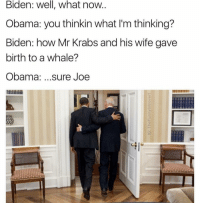 (@thefunnyintrovert): Biden: Well, what now  Obama: you thinkin what l'm thinking?  Biden: how Mr Krabs and his wife gave  birth to a whale?  Obama  sure Joe (@thefunnyintrovert)
