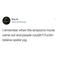 The Simpsons, Spider, and Movie: big al  @vcubikecop  I remember when the simpsons movie  came out and people couldn't Fuckin  believe spider pig