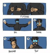 Dank, Fucking, and School: BIG  BEHIND  FUCKING  SHARK  YOU Thanks Jotaro  Source: http://hialmberi.tumblr.com/post/150693211073/signs-they-dont-teach-u-in-diving-school-feat