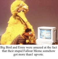 Fallout Meme: Big Bird and Ernie were amazed at the fact  that their stupid Fallout Meme somehow  got more thanl upvote.