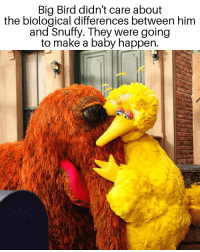 Big Bird: Big Bird didn't care about  the biological differences between hinm  and Snuffy. They were going  to make a baby happen.