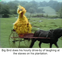 Plantation Owner Does Routine Check Up. (1743): Big Bird does his hourly drive-by of laughing at  the slaves on his plantation. Plantation Owner Does Routine Check Up. (1743)