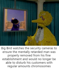 mental retardation: Big Bird watches the security cameras to  ensure the mentally retarded man was  properly removed from his fine  establishment and would no longer be  able to disturb his customers withh  regular amounts chromosomes mental retardation