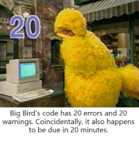 The only thing Big Bird wants to commit is suicide.: Big Bird's code has 20 errors and 20  warnings. Coincidentally, it also happens  to be due in 20 minutes. The only thing Big Bird wants to commit is suicide.