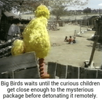 The bomb has been planted: Big Birds waits until the curious childrern  get close enough to the mysterious  package before detonating it remotely. The bomb has been planted