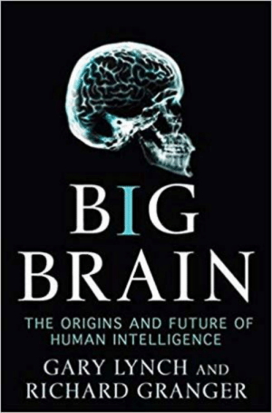 Future, Book, and Brain: BIG  BRAIN  THE ORIGINS AND FUTURE OF  HUMAN INTELLIGENCE  GARY LYNCH AND  RICHARD GRANGER This is an actual book