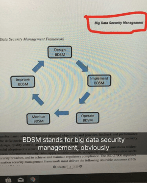 Pro Tip: before making up a new acronym, make sure that it's not already in use: Big Data Security Management  Data Security Management Framework  Design  BDSM  Improve  BDSM  Implement  BDSM  Monitor  BDSM  Operate  BDSM  or  ainst designed obiectives and provides  performance in  he deficiencie  design, quality control  ssful adoption of a securit  BDSM stands for big data security  management, obviously  urity  anizations to iden  ble controls, adequately proteet information assets  see  improvem  curity breaches, and to achieve and maintain regulatory compliarn  mation security management framework must deliver the following desirable outcomes (ISOr  G Chapter 3 20 Pro Tip: before making up a new acronym, make sure that it's not already in use