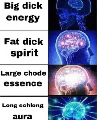 Dank, Energy, and Dick: Big diclk  energy  Fat dick  spirit  Large chode  IC  essence  Long schlong  aura