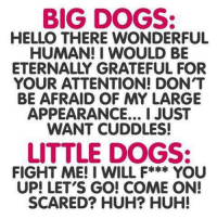 Eternally Grateful: BIG DOGS:  HELLO THERE WONDERFUL  HUMAN I WOULD BE  ETERNALLY GRATEFUL FOR  YOUR ATTENTION! DONT  BE AFRAID OF MY LARGE  APPEARANCE... I JUST  WANT CUDDLES!  LITTLE DOGS:  FIGHT ME! I WILL F***  YOU  UP! LET'S GO! COME ON!  SCARED? HUH? HUH!