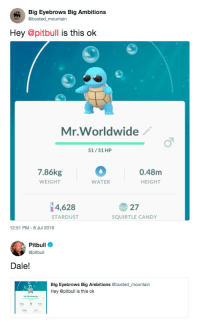 Candy, Pitbull, and Water: Big Eyebrows Big Ambitions  @busted_mountain  Hey @pitbull is this ok  Mr.Worldwide  ふ  51/51 HP  7.86kg  WEIGHT  0.48m  IT  WATER  HEIGHT  4,628  27  SQUIRTLE CANDY  STARDUST  12:51 PM- 8 Jul 2018   Pitbull  @pitbull  Dale!  Big Eyebrows Big Ambitions@busted_mountain  Hey @pitbull is this ok  37