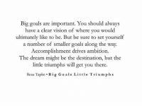 Goals, Vision, and Ambition: Big goals are important. You should always  have a clear vision of where you woul  ultimately like to be. But be sure to set yourself  a number of smaller goals along the way.  Accomplishment drives ambition  The dream might be the destination, but the  little triumphs will get you there.  Beau Taplin . Big Go als Little Triumph s