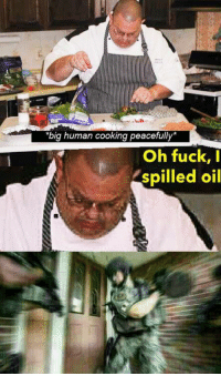 "cooking: ""big human cooking peacefully*  Oh fuck, I  spilled oil"