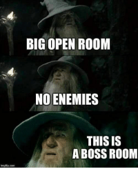 Enemies, Gaming, and Page: BIG OPEN ROOM  NO ENEMIES  THIS IS  A BOSS ROOM  mgflip.com / The Gaming Page