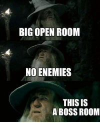 Funny, Enemies, and Boss: BIG OPEN ROOM  NO ENEMIES  THIS IS  A BOSS ROOM