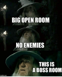 Fail, Memes, and Enemies: BIG OPEN ROOM  NO ENEMIES  THIS IS  A BOSS ROOM  mgflip.conm Critcal fail via /r/memes https://ift.tt/2AiVYuP