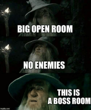 Critcal fail by The-Gallifrey-Senate MORE MEMES: BIG OPEN ROOM  NO ENEMIES  THIS IS  A BOSS ROOM  mgflip.conm Critcal fail by The-Gallifrey-Senate MORE MEMES