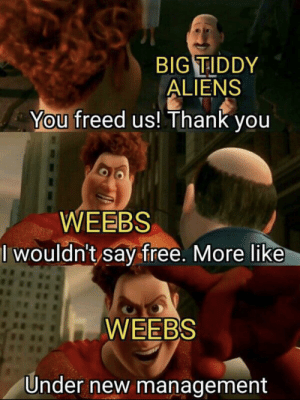 Aliens, Thank You, and Free: BIG TIDDY  ALIENS  You freed us! Thank you  WEEBS  I wouldn't say free. More like  WEEBS  Under new management Me when I get a new job 😂