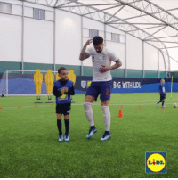 Walker is dreaming big by planning some new celebrations! @lidluk DreamBigWithLidl: BIG WITH LD Walker is dreaming big by planning some new celebrations! @lidluk DreamBigWithLidl
