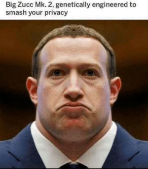 Privacy: Big Zucc Mk. 2, genetically engineered to  smash your privacy
