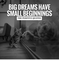Never Give Up!: BIGDREAMSHAVE  SMALL BEGINNINGS  THE POSITIVE QUOTES Never Give Up!