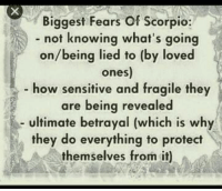 Scorpio, How, and Knowing: Biggest Fears of Scorpio:  not knowing what's going  on/being lied to (by loved  ones)  how sensitive and fragile they  are being revealed  ultimate betrayal (which is why  they do everything to protect  themselves from it) #RealRap