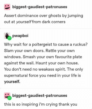 80+ Fresh Tumblr Posts | Page 34 of 42 | funnynmemes: biggest-gaudiest - patron uses  Assert dominance over ghosts by jumping  out at yourself from dark corners  pwapboi  Why wait for a poltergeist to cause a ruckus?  Slam your own doors. Rattle your own  windows. Smash your own favourite plate  against the wall. Haunt your own house.  You don't need no weakass spirit. The only  supernatural force you need in your life is  yourself.  biggest-gaudiest-patronuses  this is so inspiring i'm crying thank you 80+ Fresh Tumblr Posts | Page 34 of 42 | funnynmemes