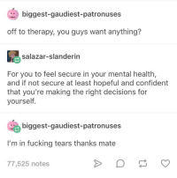 Fucking, Tumblr, and Wholesome: biggest-gaudiest-patronuses  off to therapy, you guys want anything?  salazar-slanderin  For you to feel secure in your mental health,  and if not secure at least hopeful and confident  that you're making the right decisions for  yourself.  biggest-gaudiest-patronuses  I'm in fucking tears thanks mate  77,525 notes Tumblr being wholesome