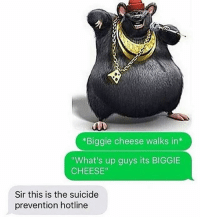 """cheesing: *Biggie cheese walks in  """"What's up guys its BIGGIE  CHEESE""""  Sir this is the suicide  prevention hotline"""