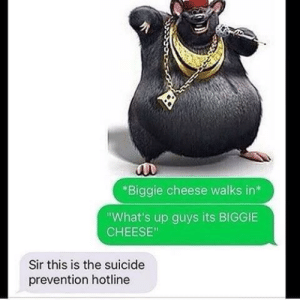 "Suicide, Cheese, and Biggie: Biggie cheese walks in*  What's up guys its BIGGIE  CHEESE""  Sir this is the suicide  prevention hotline me🧀irl"