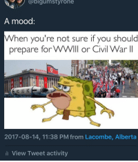 <p>Better prepare for both.. 😳😳 (via /r/BlackPeopleTwitter)</p>: @bigumstyrone  A mood  When you're not sure if you should  prepare for WWIll or Civil War II  2017-08-14, 11:38 PM from Lacombe, Alberta  l View Tweet activity <p>Better prepare for both.. 😳😳 (via /r/BlackPeopleTwitter)</p>
