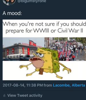 Better prepare for both.. 😳😳: @bigumstyrone  A mood  When you're not sure if you should  prepare for WWIll or Civil War II  2017-08-14, 11:38 PM from Lacombe, Alberta  l View Tweet activity Better prepare for both.. 😳😳