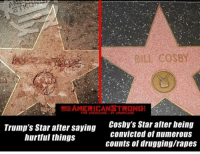 Memes, Furniture, and Home: BILE COSBY  AMERIGANSTRONG  Trump's Star after saying  hurtful things  Coshy's Star after being  convicted of numerous  counts of drugging/rapes :- TheRaisedRight.com _________________________________________ Raised Right 5753 Hwy 85 North 2486 Crestview, Fl 32536 _________________________________________ Like my page? Make sure to check out and follow the my sponsor who helps keep it running! 🛠@texasrusticdecor_more🛠 Custom rustic wood working and carpentry! DM Erik for more information on furniture and decor for your home! --------------------