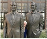 Bill, Bushes, and  Two: Bill hiding between two bushes