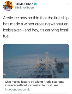 Tumblr, Winter, and Blog: Bill McKibben  @billmckibben  OD  Arctic ice now so thin that the first ship  has made a winter crossing without an  icebreaker--and hey, it's carrying fossil  fuel!  Ship makes history by taking Arctic sea route  in winter without icebreaker for first time  independent.co.uk spiroandthelacktones:  … I…   Ive never facepalmed so hard to anything