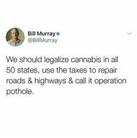 Memes, Taxes, and Bill Murray: Bill Murray  @BillMurray  We should legalize cannabis in all  50 states, use the taxes to repair  roads & highways & call it operation  pothole. 🚨 WARNING 🚨 DO NOT FOLLOW @TOPTREE if you're easily offended!!!