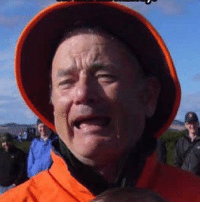 Bill Murray or Tom Hanks: Bill Murray or Tom Hanks