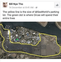 Bill Nye, Memes, and Orcas: Bill Nye Tho  14 December at 8:41 AM  The yellow line is the size of aseaWorld's parking  lot. The green dot is where Orcas will spend their  entire lives Last one! Just hope everyone is aware of this! 🙃 Night y'all! randomwednesday tumblr tumblrtextpost seaworld orcawhale orcas stopseaworld