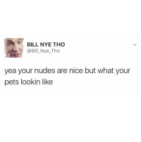 Bill Nye, Dick Pics, and Funny: BILL NYE THO  @Bill Nye Tho  yea your nudes are nice but what your  pets lookin like Dogs pics > dick pics (@_kevinboner)