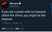 Mirror, Pirate, and Nov: bill wurtz  @billwurtz  if you are a pirate with no treasure,  check the mirror, you might be the  treasure  11:29 a.m. 29 Nov. 18  135 Retweets 336 Likes To make your day a little better