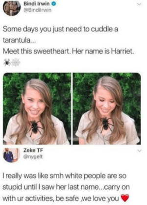Birthday, Love, and Saw: Bindi Irwin  @Bindilrwin  Some days you just need to cuddle a  tarantula...  Meet this sweetheart. Her name is Harriet.  Zeke TF  @nygelt  I really was like smh white people are so  stupid until I saw her last name...carry on  with ur activities, be safe ,we love you Happy birthday Steve via /r/wholesomememes https://ift.tt/2Tcd5Km