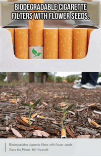 <p>Definitely A Genius Idea.</p>: BIODEGRADABLE CIGARETTE  Biodegradable cigarette filters with flower seeds  Save the Planet, Kill Yourself. <p>Definitely A Genius Idea.</p>