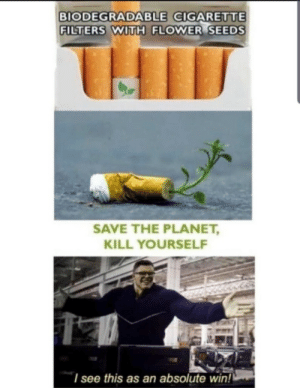 Flower, Cigarette, and Planet: BIODEGRADABLE CIGARETTE  FILTERS WITH FLOWER SEEDS  SAVE THE PLANET,  KILL YOURSELF  I see this as an absolute wiin!