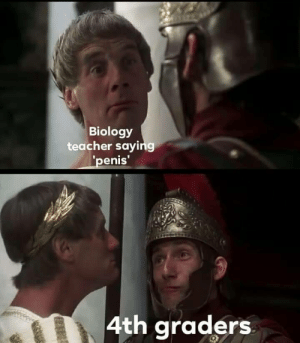 Memes, Teacher, and Biology: Biology  teacher saying  enis  4th graders Are Monty Python memes too obscure?