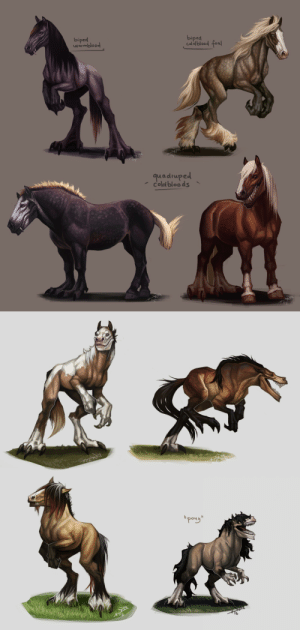 "Horses, Target, and Tumblr: biped  biped  Caldblood fea  wrmbloo  quadruped  coled bloo ds   ""pong"" drferox:  notesz-b:  A few previous designs without a tail, except the quadrupeds. Not sure to give them one yet, their balance doesn't depend on it. Don't want to waste those pretty colors.   (;﹏;)    Predatory Ponies, as if horses weren't concerning enough."
